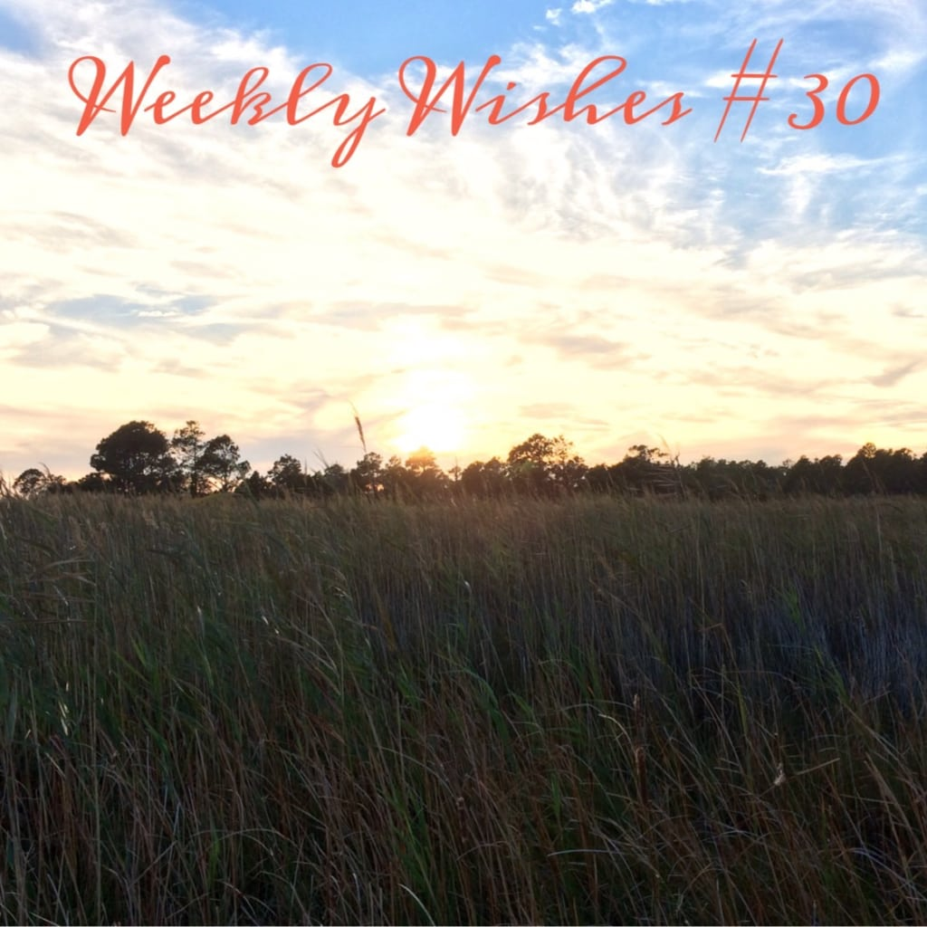 Weekly Wishes #30 // October