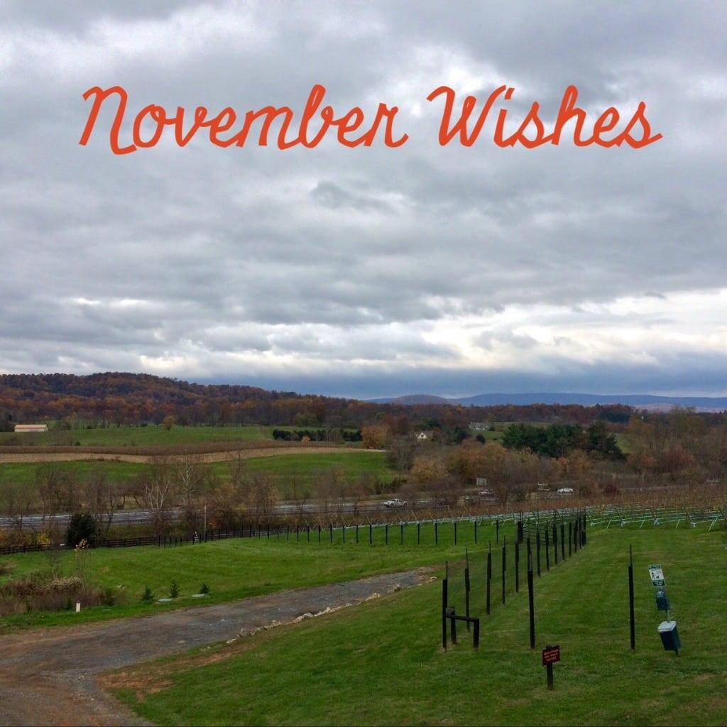 November Wishes