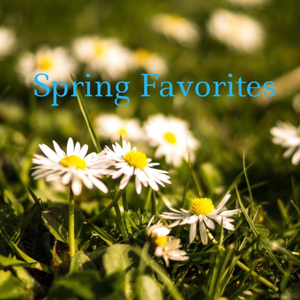 2015 Favorites | Spring