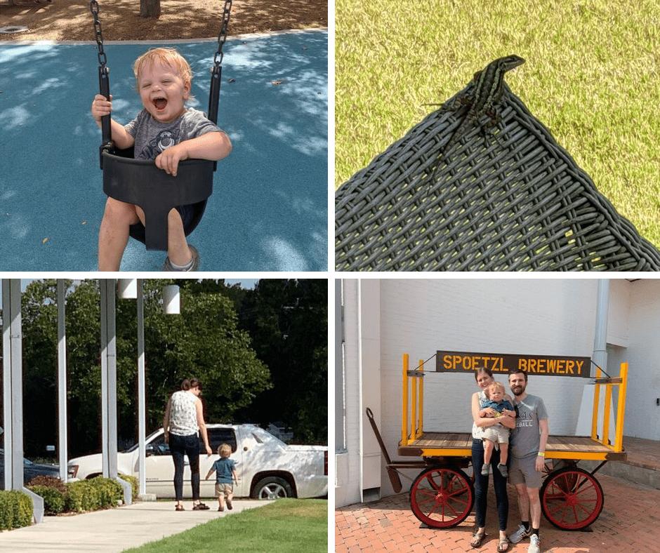 Scenes From the Month_Sept 2019_EverydayAccountsBlog.com